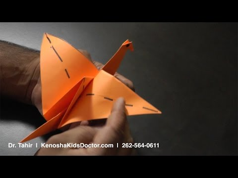 How To Fold An Origami Flapping Bird Step-By-Step