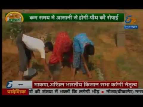 Easy Planter Handy Machine Paude lagane ki machine खेत में पौधे लगाने की आसान मशीन