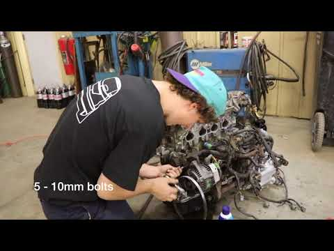 How to change B series timing belt Honda Acura