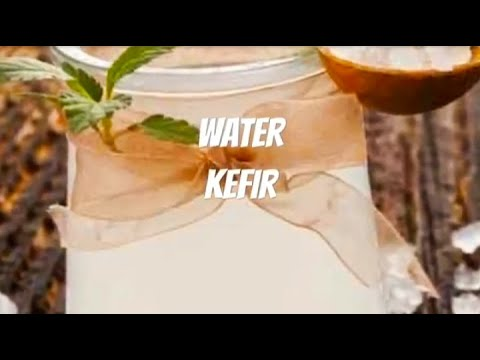 Water Kefir (Everything you need to know)