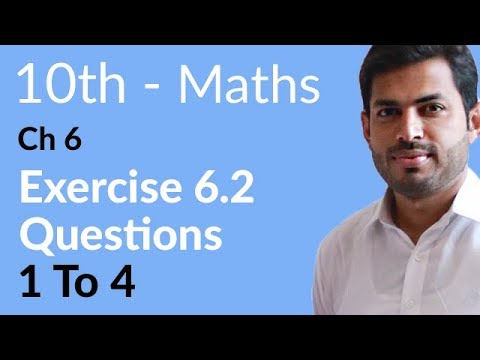 10th Class Maths solutions ,ch 6, lec 1, Introduction Exercise 6.2, Question no 1 to 4