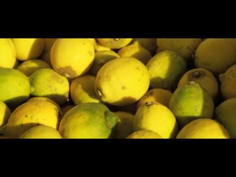 Marina Colonna  lemon olive oil
