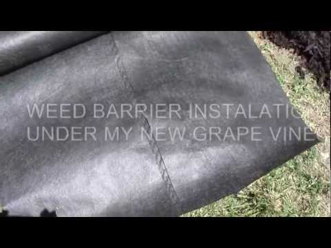 WEED BARRIER FABRIC-HOW TO INSTALL 6-17-12