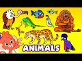 Learn Zoo Animals For Kids Wild Zoo Animal Names And Sounds For Children Club Baboo