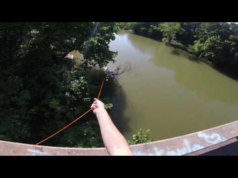 Incredible bowfishing head shot from a bridge