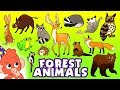 Learn Animals For Kids Wild Forest Animals Names And Sounds For Children Club Baboo
