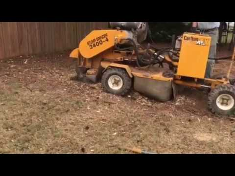 Quick Stump Grinding