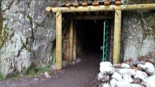 Secret Nazi treasure: Men claim to have found hidden train