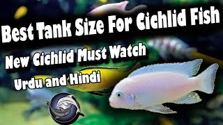 CHICHLID FISH FARM IN A VILLAGE OF WEST BENGAL INDIA Videos