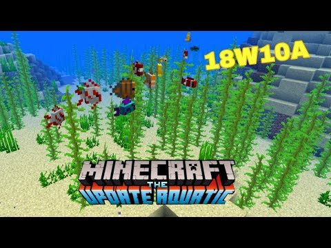 NEW Minecraft 1.13 (Snapshot 18W10A) buried treasure, tropical fish, coral plants, map markers !!!