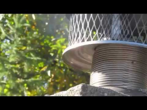 Wasp nest in chimney void | Bug Bully Pest Control Grafton, Ma. USA