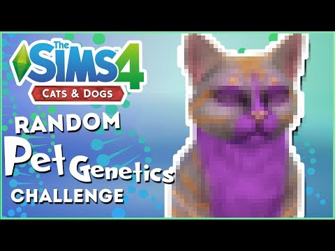 Surrounded By Beautiful Cats!! 🎲 Random Pet Genetics Challenge!! - Experiment #43