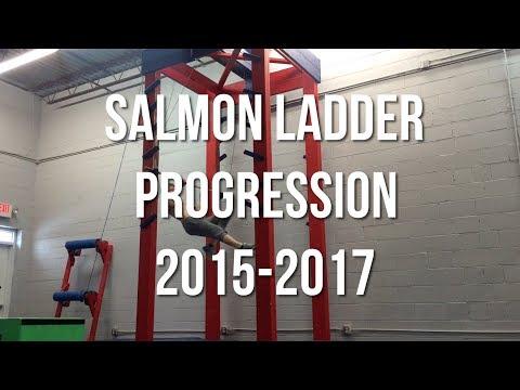 Salmon Ladder Progression 2015-2017