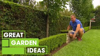Tips & Tricks For Perfect Hedging | Gardening | Great Home Ideas