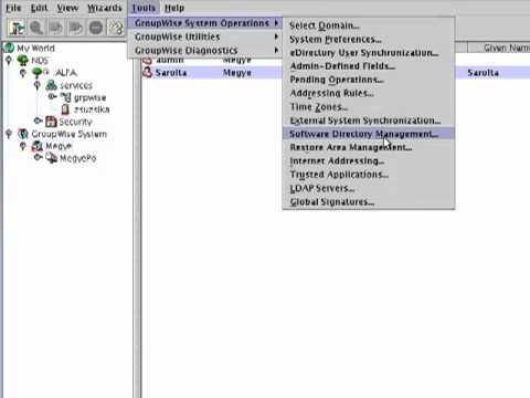 GroupWise adminisztrációja ConsoleOne-ból III.