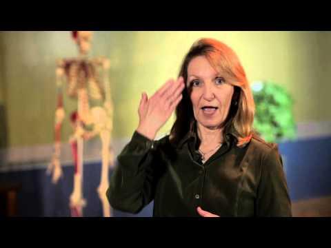 Sitting Tall- Massage Therapy Body Mechanics Tips
