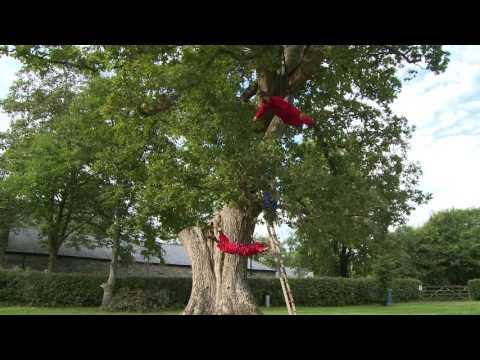 Calling Tree | Bruce Castle Park 30, June - 2 July, part of #LIFT2016