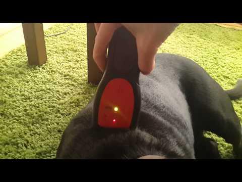 Stud finder to find microchip