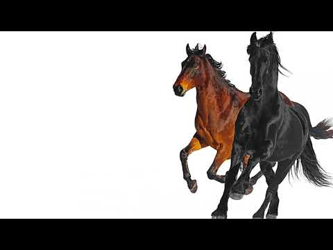Xxx Mp4 Lil Nas X Old Town Road Feat Billy Ray Cyrus Remix 3gp Sex
