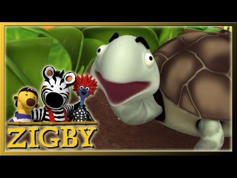 Xxx Mp4 Zigby Episode 52 Zigby And The Tortoise 3gp Sex
