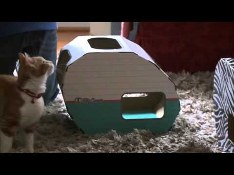 How to keep cats off furniture and entertain them with the NEW Kitty Camper
