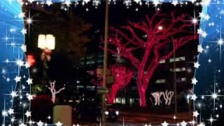 Christmas with Hawaii Five-0