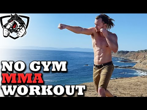 No Gym Boxing/MMA Workout -- Training at Home!