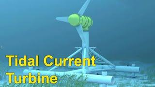 Ocean Energy - Tidal Current Turbine