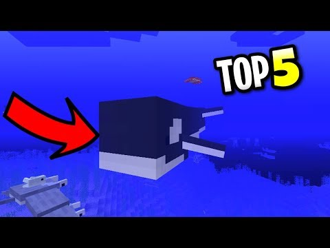 Minecraft Top 5 Aquatic Mobs! Ocean Animals Wishlist! PS3, PS4, Xbox 360 & Xbox One
