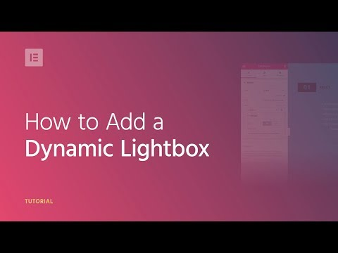 How to Add a Dynamic Lightbox to Your WordPress Website