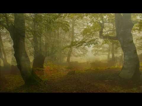 Pachelbel Canon Piano - (Variations on Canon)