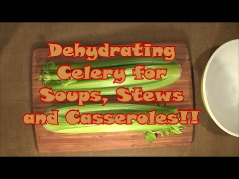 Dehydrating Celery for soups, stews and casseroles