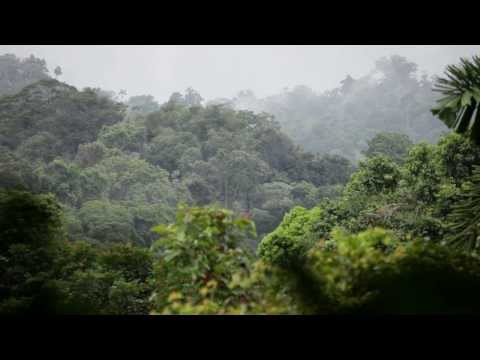 Thomson Cruises - destination Costa Rica