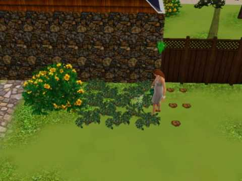 The Sims 3: Gamplay..Garden..