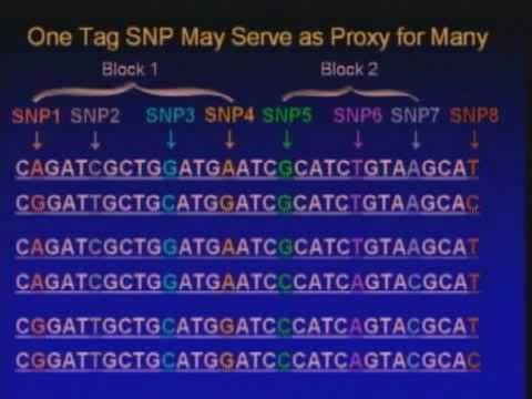 Measurement of Genetic Exposure