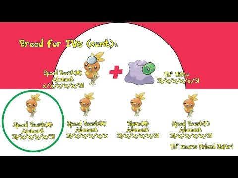 Gen 6(X/Y) Pokémon IV Breeding Guide (With Pictures!)