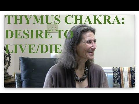 Thymus Chakra Point Reveals Desire to Live/Die - Interview with Lynn Himmelman, NDT Master Trainer