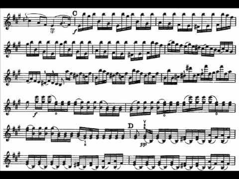 Viotti, Giovanni B. violin concerto 22 mvt1(begin) Moderato