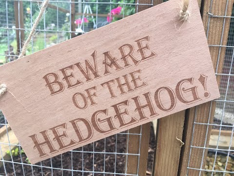 Our Big Hedgehog House Build in support of #AmazingGrace