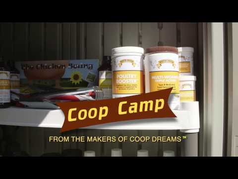 Coop Camp Sponsored by Backyard Poultry