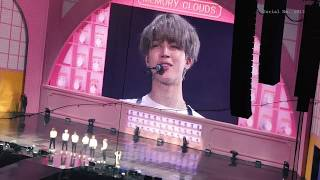 BTS - PIED PIPER JIMIN FOCUS @ BTS 4th MUSTER [Happy Ever After
