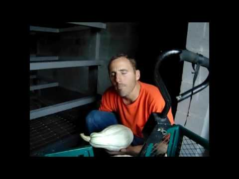 Root Cellar - Join us as we put our first vegetables in it!