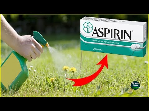 Top 5 Uses of ASPIRIN You Might Not Know About !