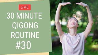 Qigong with Kseny Videos - PakVim net HD Vdieos Portal