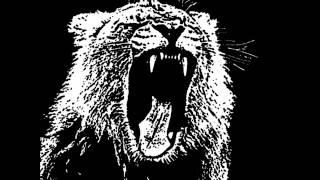 animals-martin garrix