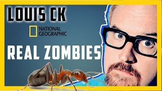 Louis CK - Real ant Zombies!