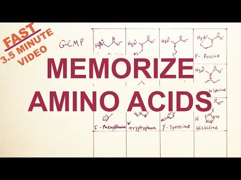 EASY-Memorize the Twenty Amino Acids: Structure and Code- tryptophan correction!