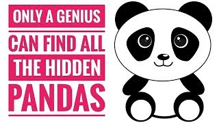 Only Genius Can Find The Panda Videos - 9tube tv