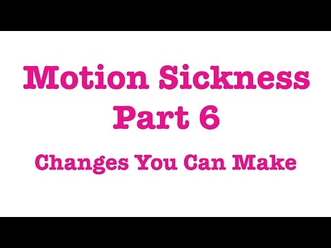 Motion Sickness In Dogs Part 6   Changes You Can Make