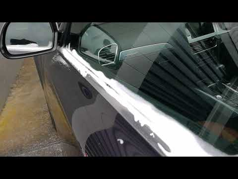 Steaming Moss removal Audi